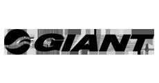 18 Giant Logo
