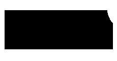 33 FLIR Logo